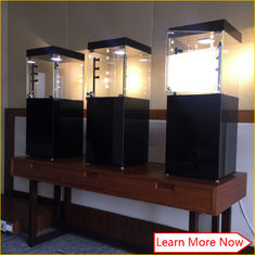 中国 Custom modern black glass mdf cabinet for jewelry 工場